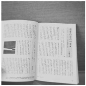 f:id:tomoko_ishimura:20170515140307j:plain