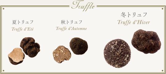 f:id:tomoko_suegami:20170330184435j:plain