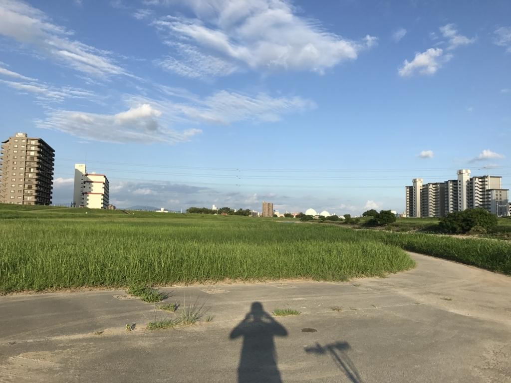 f:id:tomokusa_mei:20170829212422j:plain
