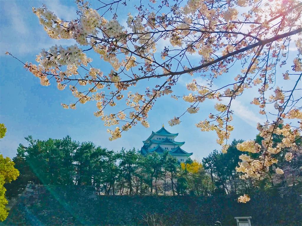 f:id:tomokusa_mei:20180326203237j:image