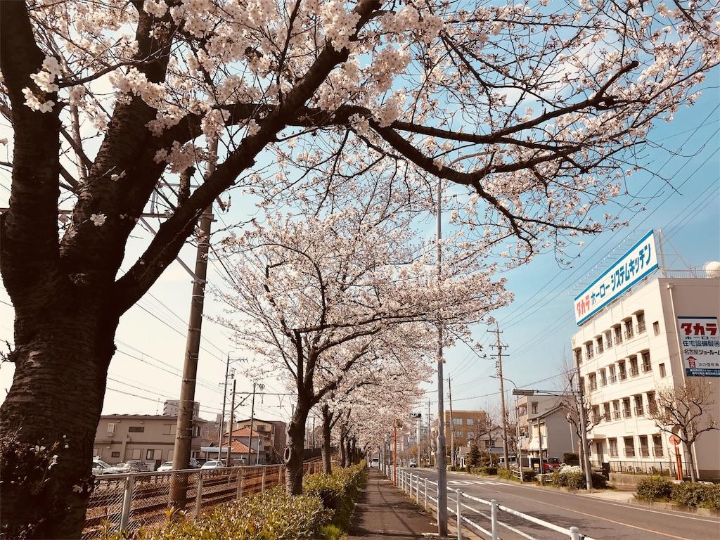 f:id:tomokusa_mei:20180326204341j:image
