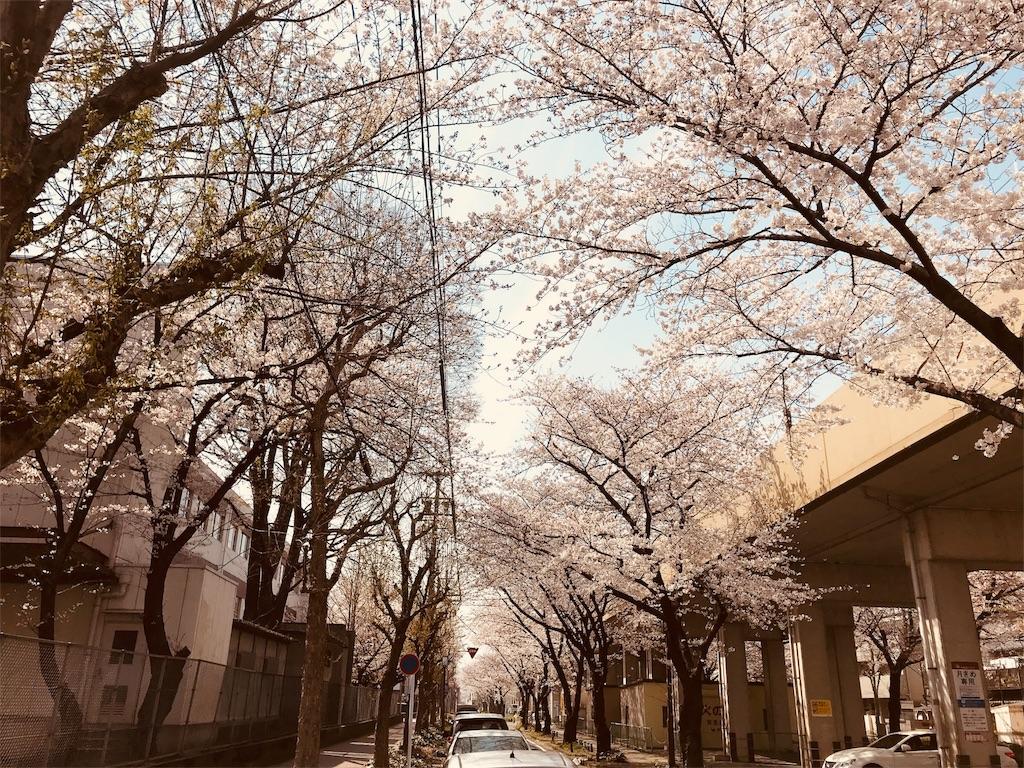 f:id:tomokusa_mei:20180326204447j:image