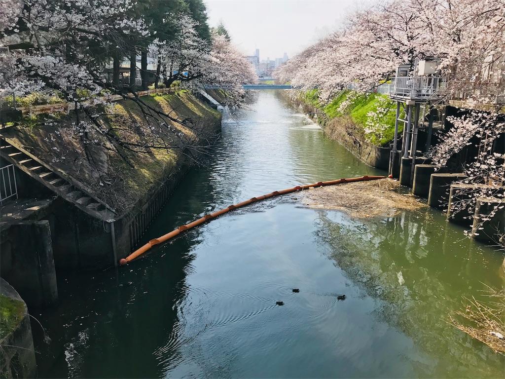 f:id:tomokusa_mei:20180326205835j:image