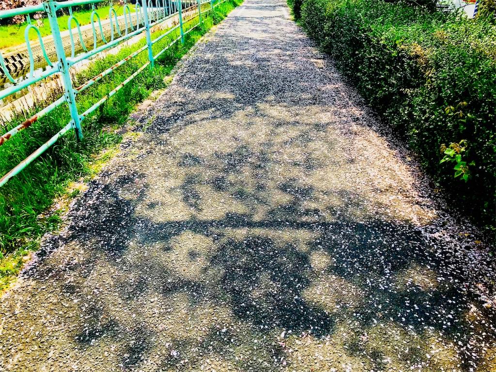f:id:tomokusa_mei:20180403224331j:image