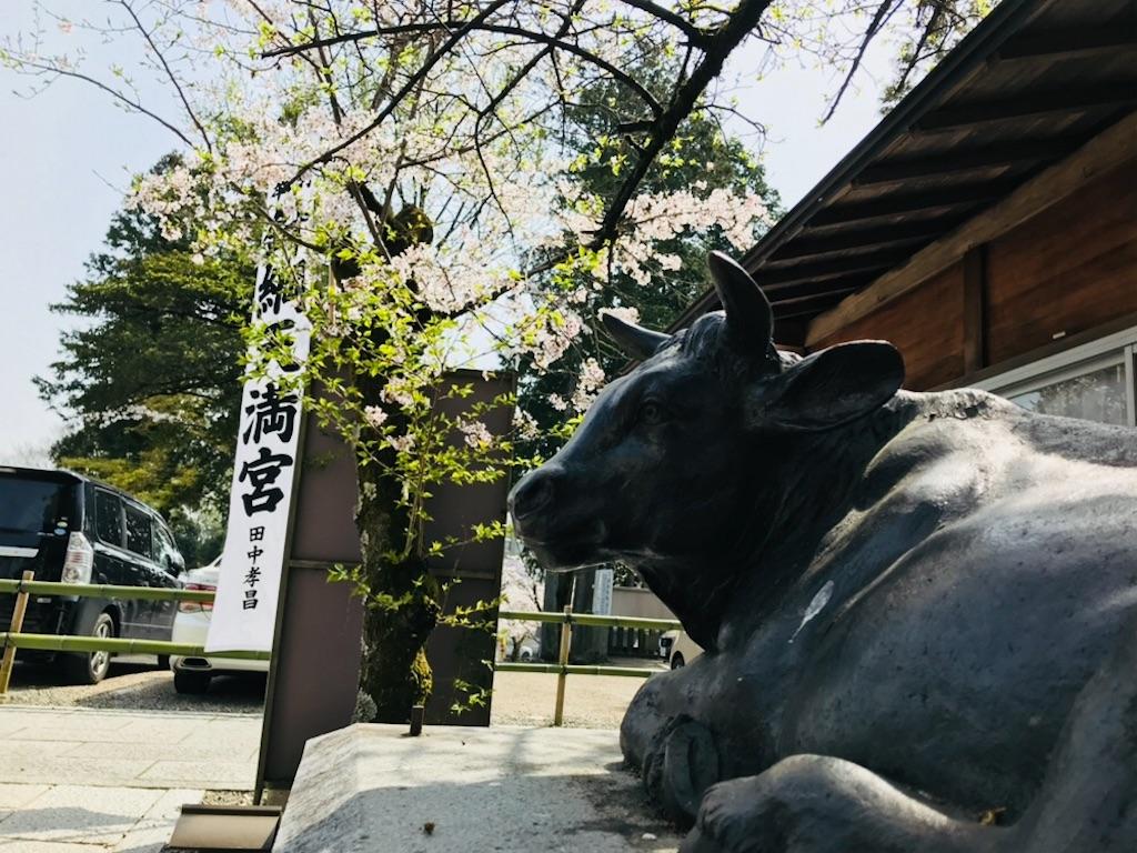 f:id:tomokusa_mei:20180409211615j:image