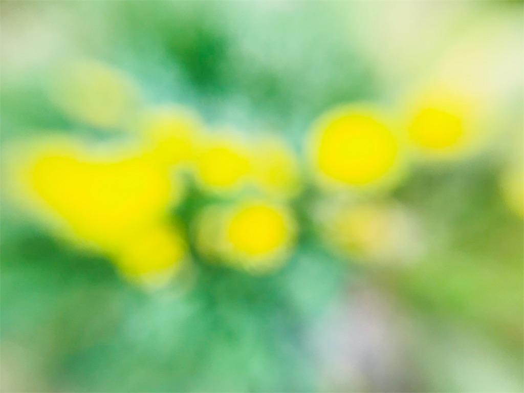 f:id:tomokusa_mei:20180415201907j:image