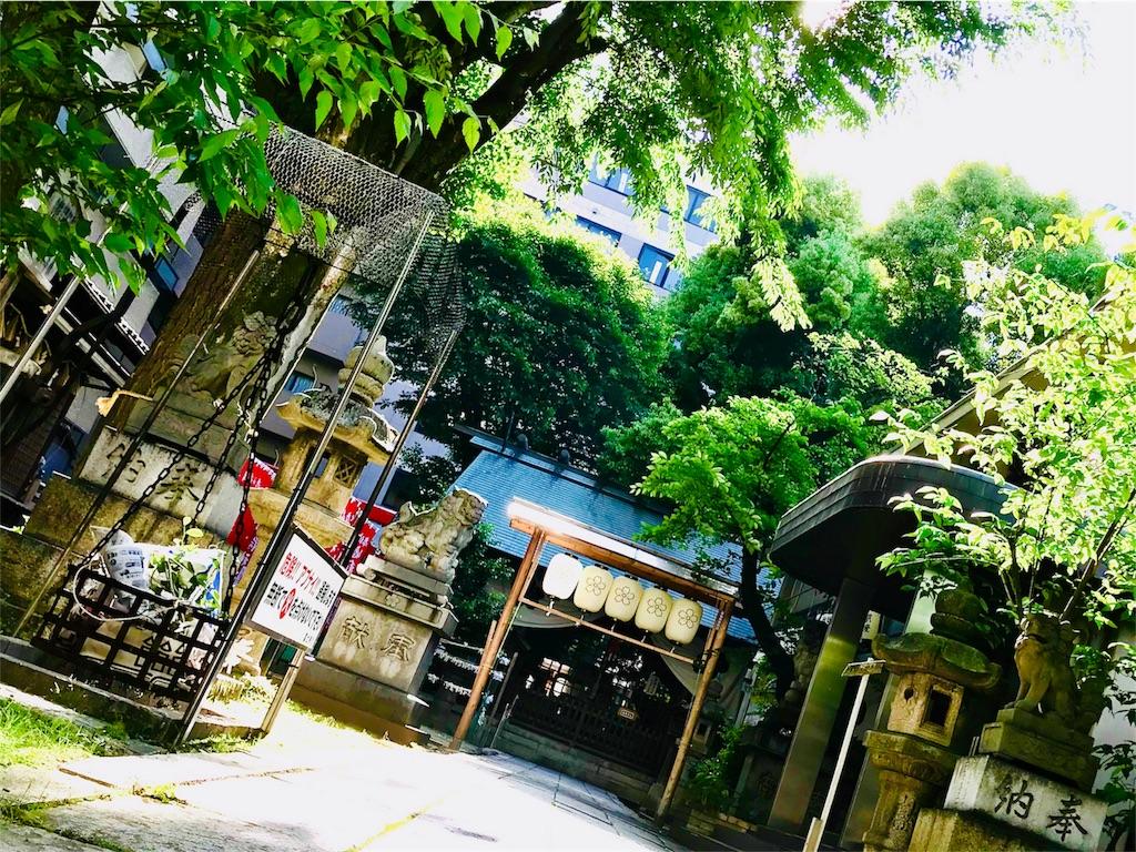 f:id:tomokusa_mei:20180510211646j:image