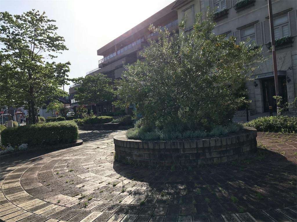 f:id:tomokusa_mei:20180526191019j:image