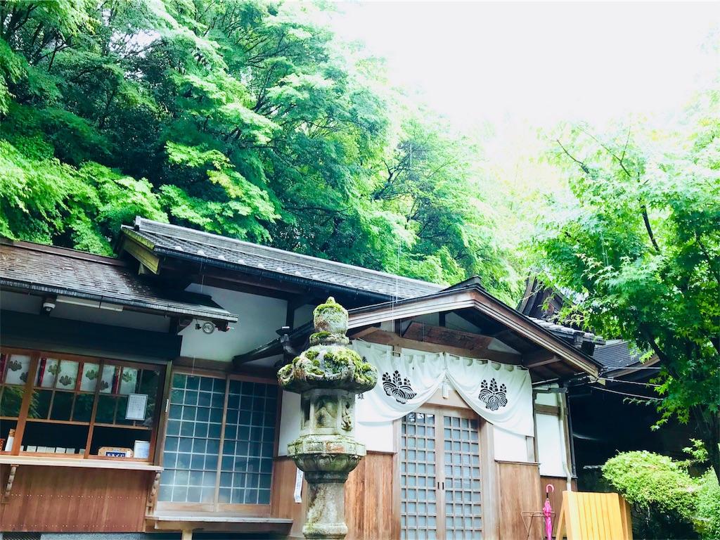 f:id:tomokusa_mei:20180622131845j:image