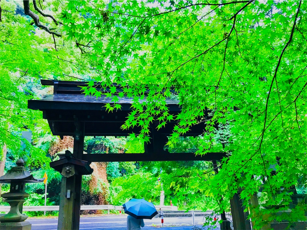 f:id:tomokusa_mei:20180622132404j:image