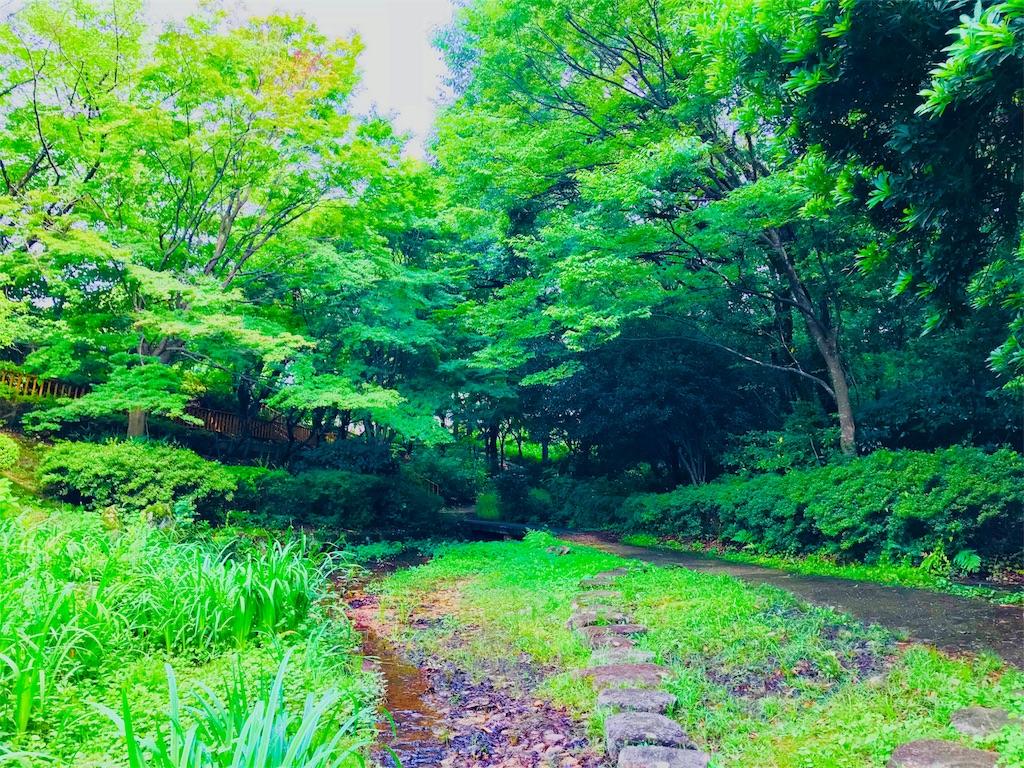 f:id:tomokusa_mei:20180622133302j:image