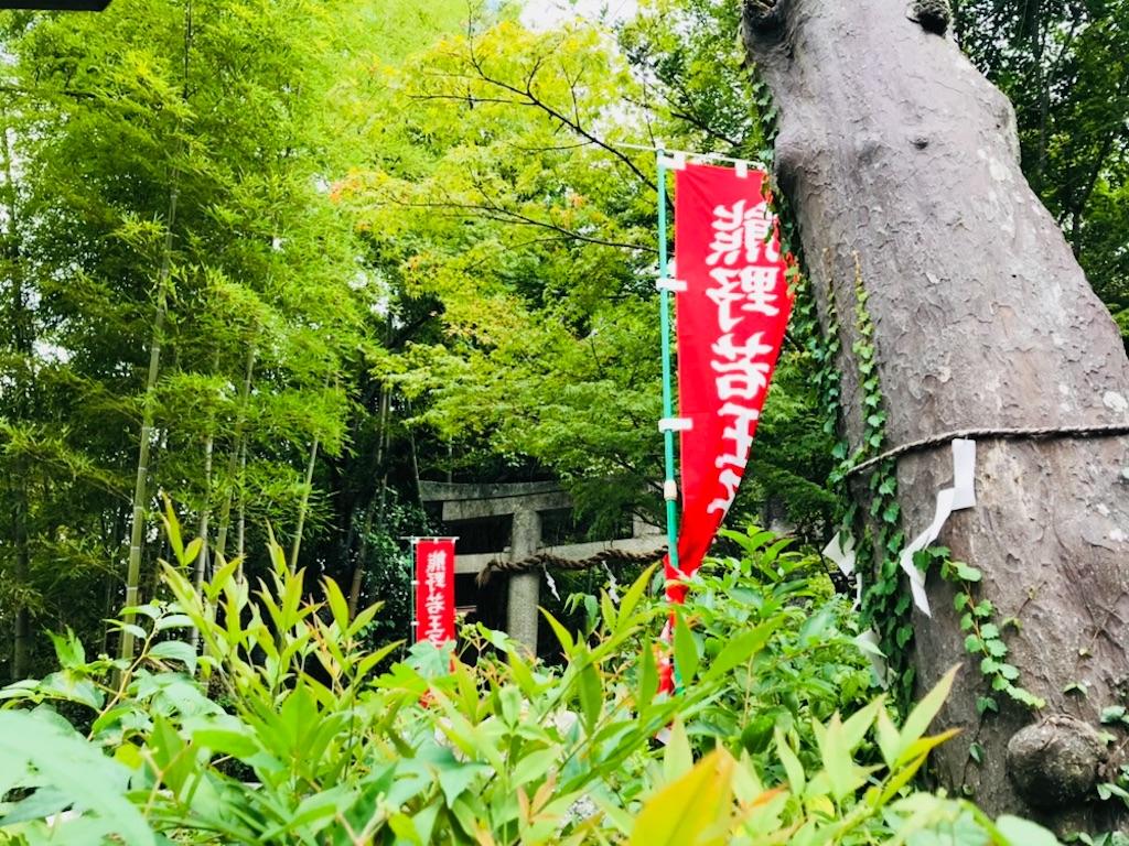 f:id:tomokusa_mei:20180809200251j:image