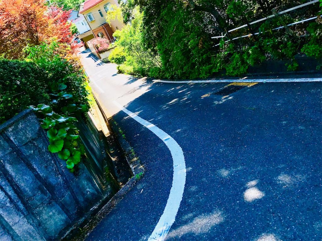 f:id:tomokusa_mei:20190526194842j:image