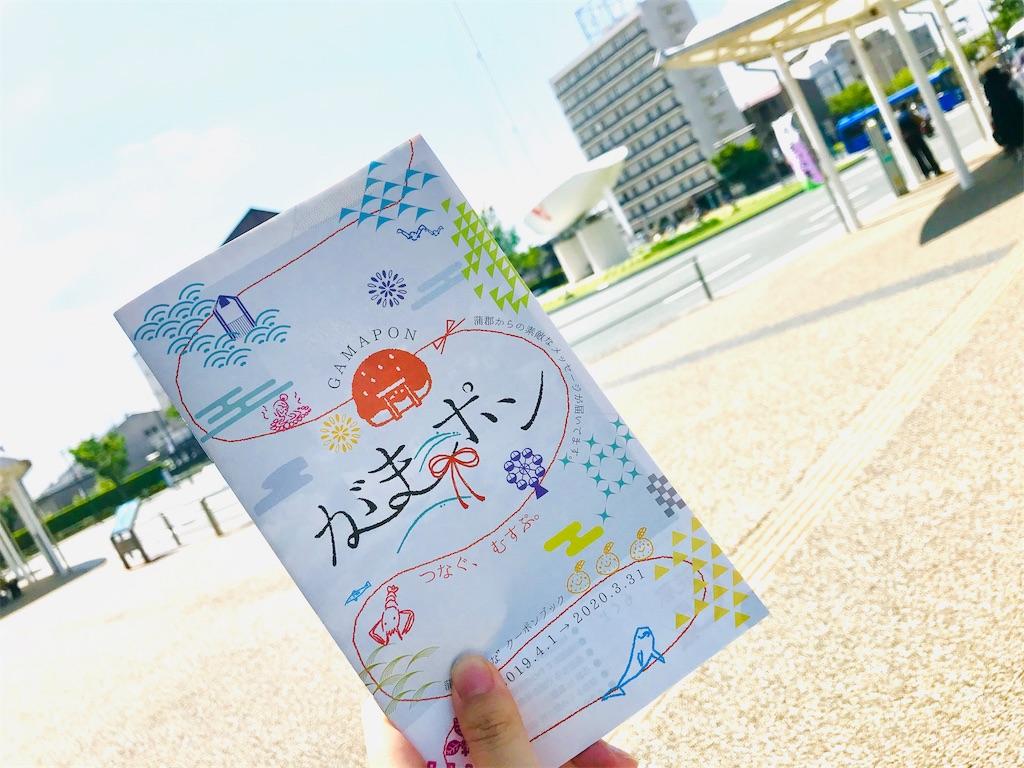 f:id:tomokusa_mei:20190621134518j:image