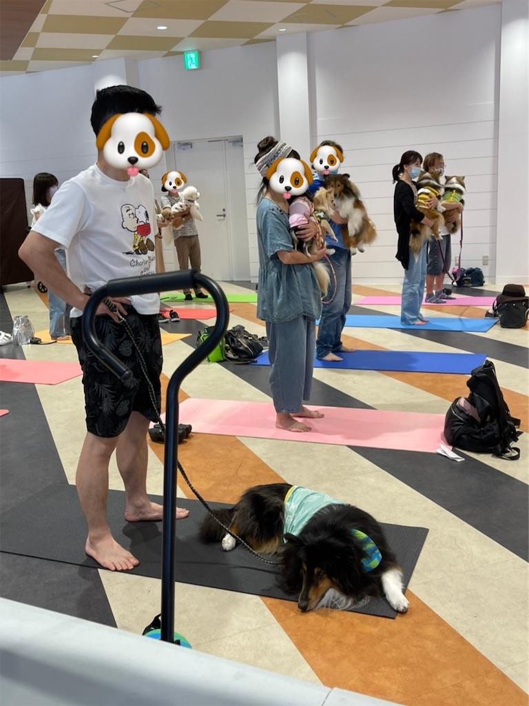f:id:tomomi_yoga:20210718002742j:image