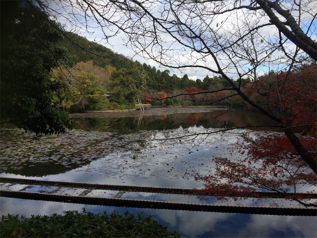 f:id:tomomiishida:20161126101651j:image