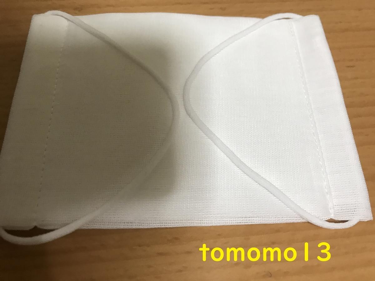 f:id:tomomo13:20200526232216j:plain