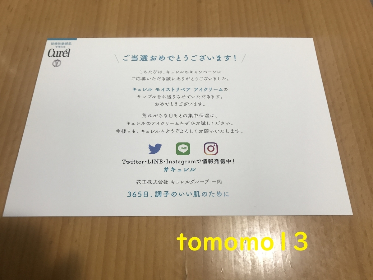 f:id:tomomo13:20201222105535j:plain