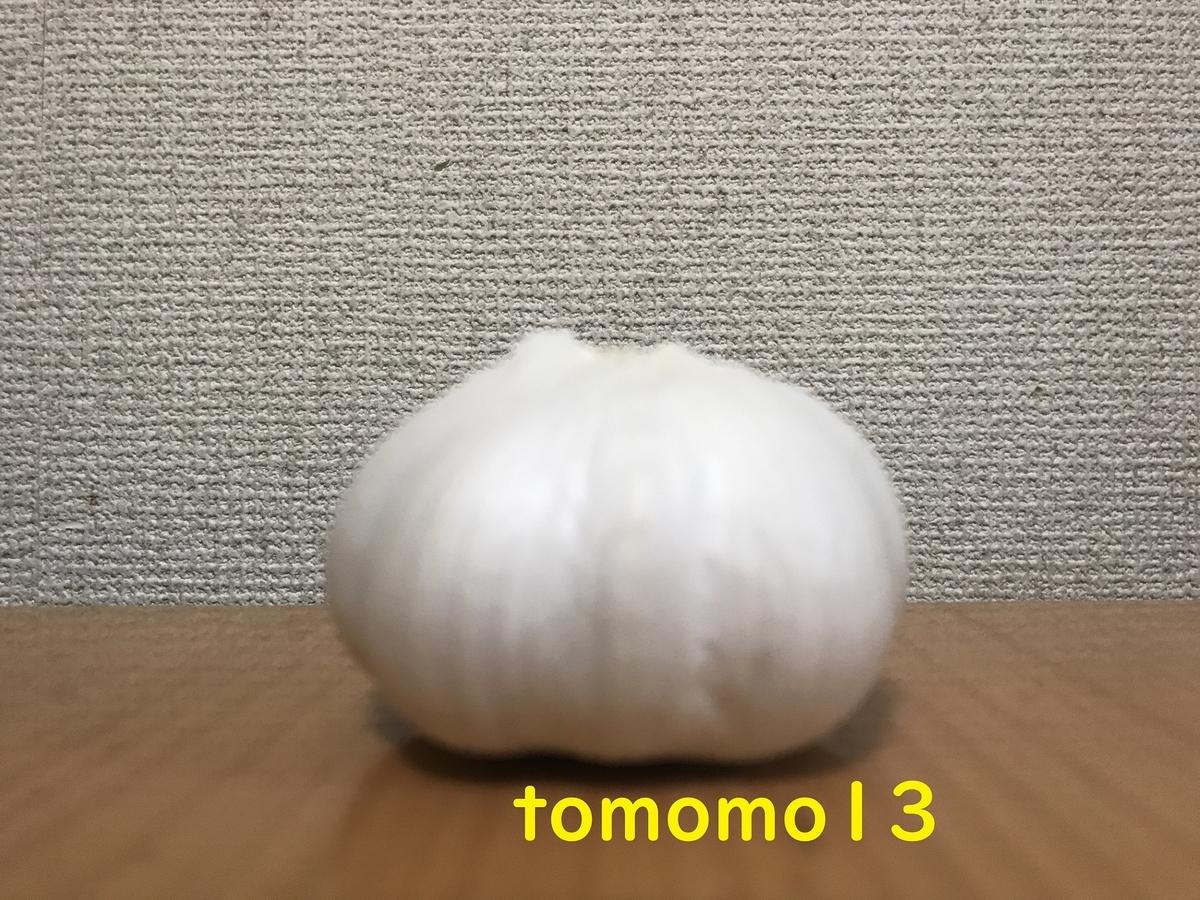 f:id:tomomo13:20210401093215j:plain