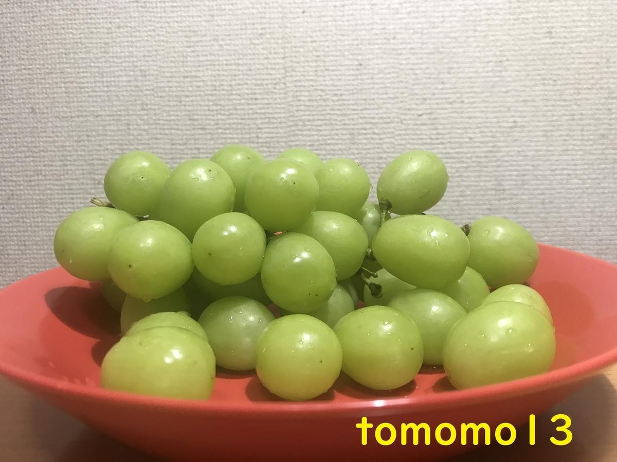 f:id:tomomo13:20211005121637j:plain