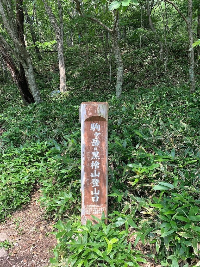 f:id:tomosaku:20190818121450j:image