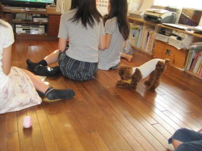 f:id:tomosyoku:20100616165840j:image