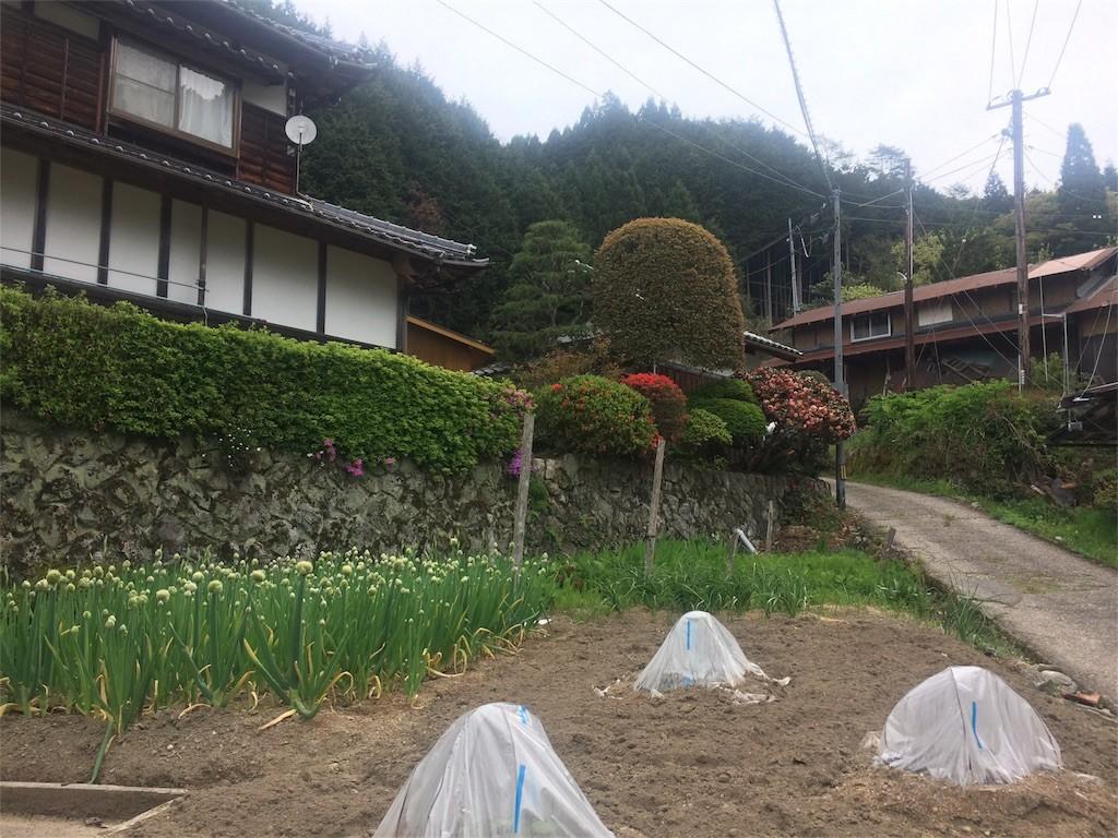 f:id:tomosyoku:20170505220737j:image