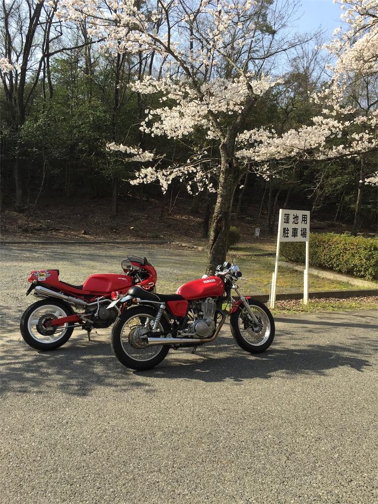 f:id:tomoyasukara:20180520125002j:image