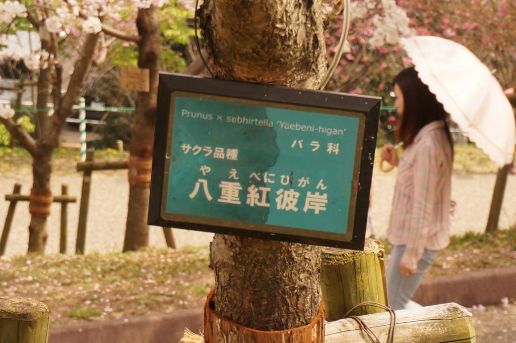 f:id:tomoyoshiyoshi:20160408091124j:plain