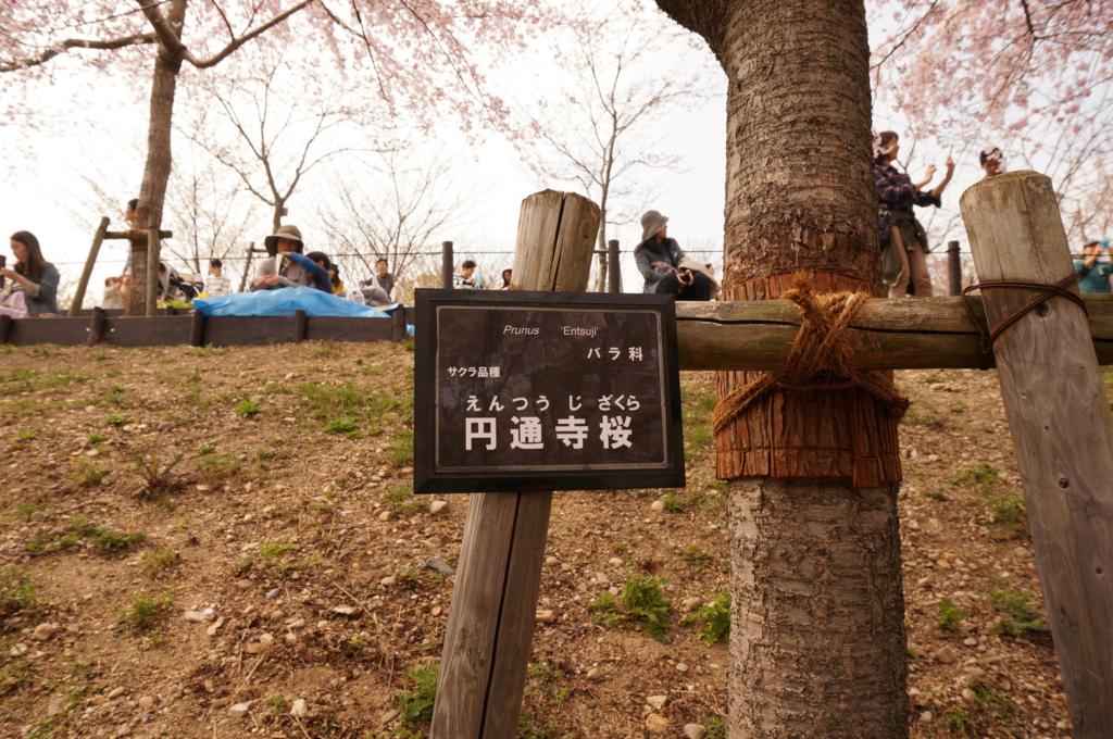 f:id:tomoyoshiyoshi:20160408093856j:plain