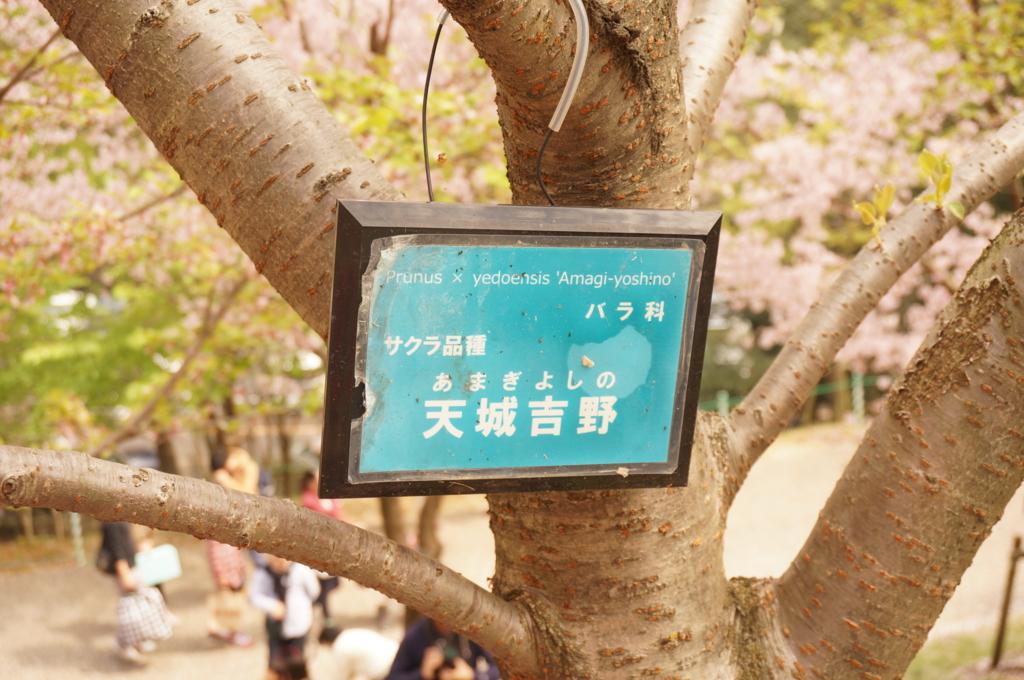 f:id:tomoyoshiyoshi:20160408094503j:plain