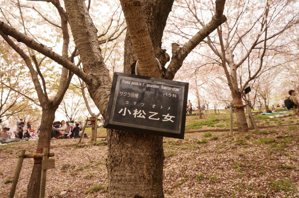 f:id:tomoyoshiyoshi:20160408225748j:plain
