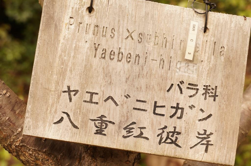f:id:tomoyoshiyoshi:20160408232842j:plain