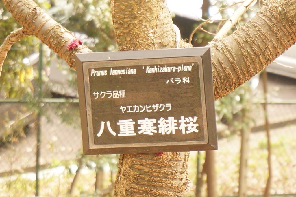 f:id:tomoyoshiyoshi:20160408234327j:plain