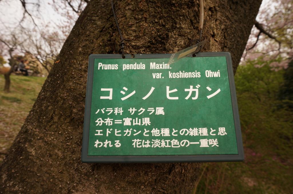 f:id:tomoyoshiyoshi:20160409000334j:plain