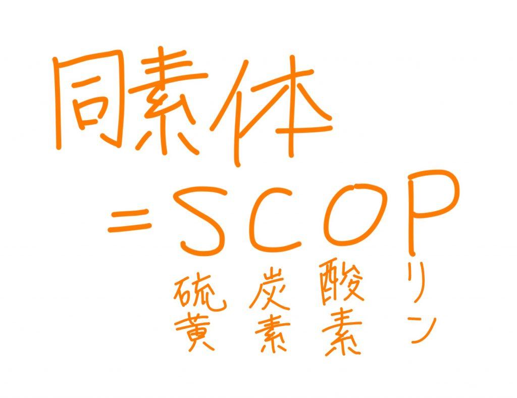 f:id:tomoyoshiyoshi:20170122091818j:plain