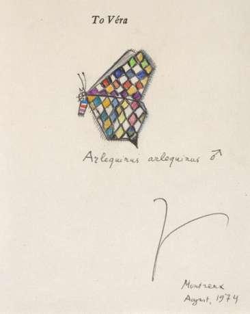ウラジミール・ナボコフが描いた架空の蝶
