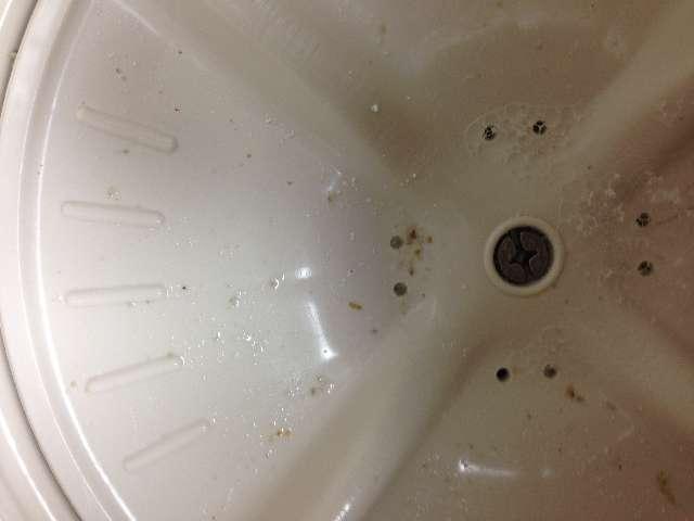 洗濯機を酸素系漂白剤を使って掃除する