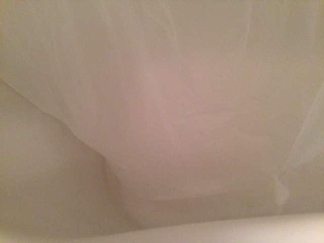 100均のシャワーカーテン