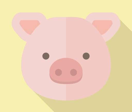 鶏肉と豚肉、牛肉の栄養の比較