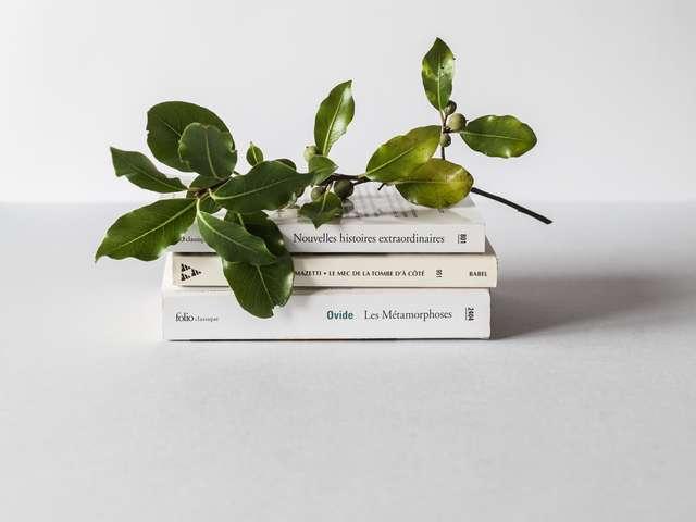 ミニマリストにおすすめの本20冊をジャンル別にまとめて紹介!