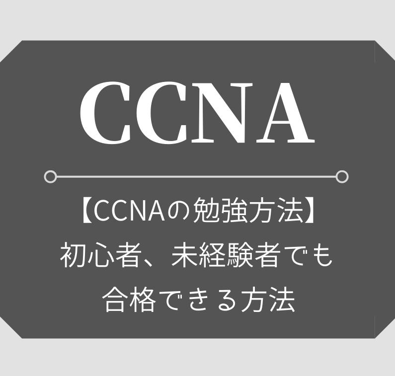 CCNAの勉強方法を具体的に紹介【初心者、未経験でも合格!】