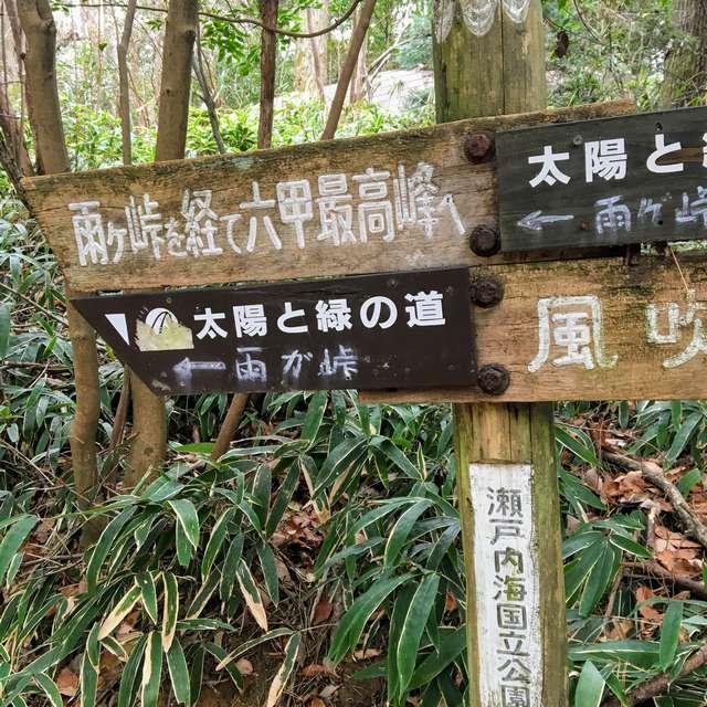 f:id:tomoyukitomoyuki:20200128192502j:plain