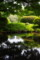 沼のある風景その4