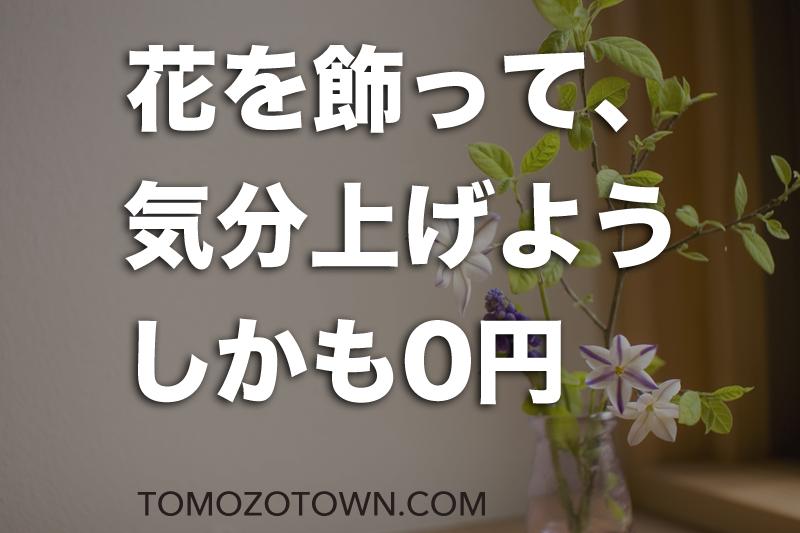 f:id:tomozonesu:20180414170146p:plain