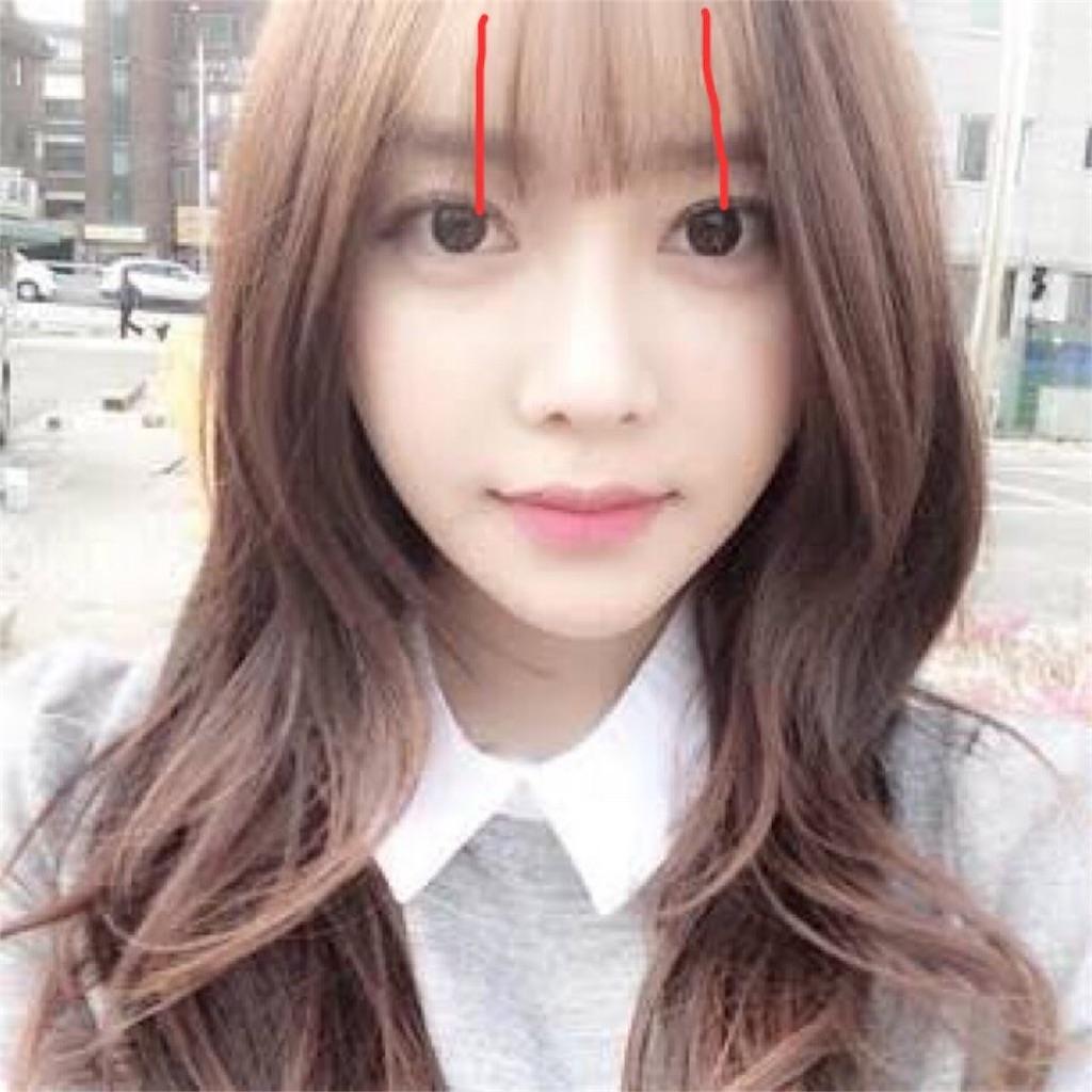 イヌリちゃんの前髪カット解説