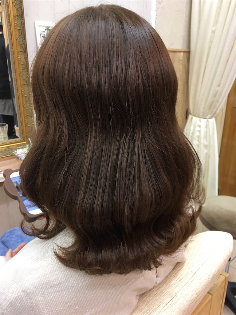 f:id:tomozou737:20170105045639j:image