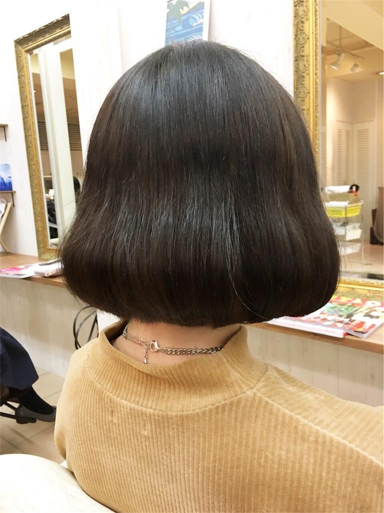 f:id:tomozou737:20170119131544j:image