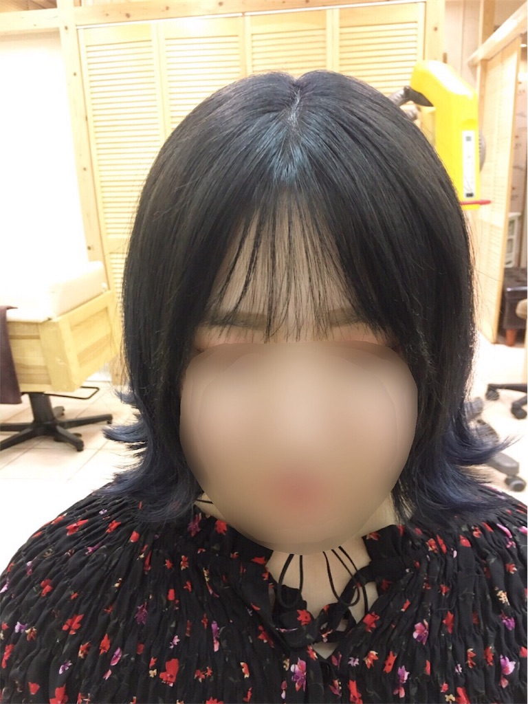 f:id:tomozou737:20170204181158j:image