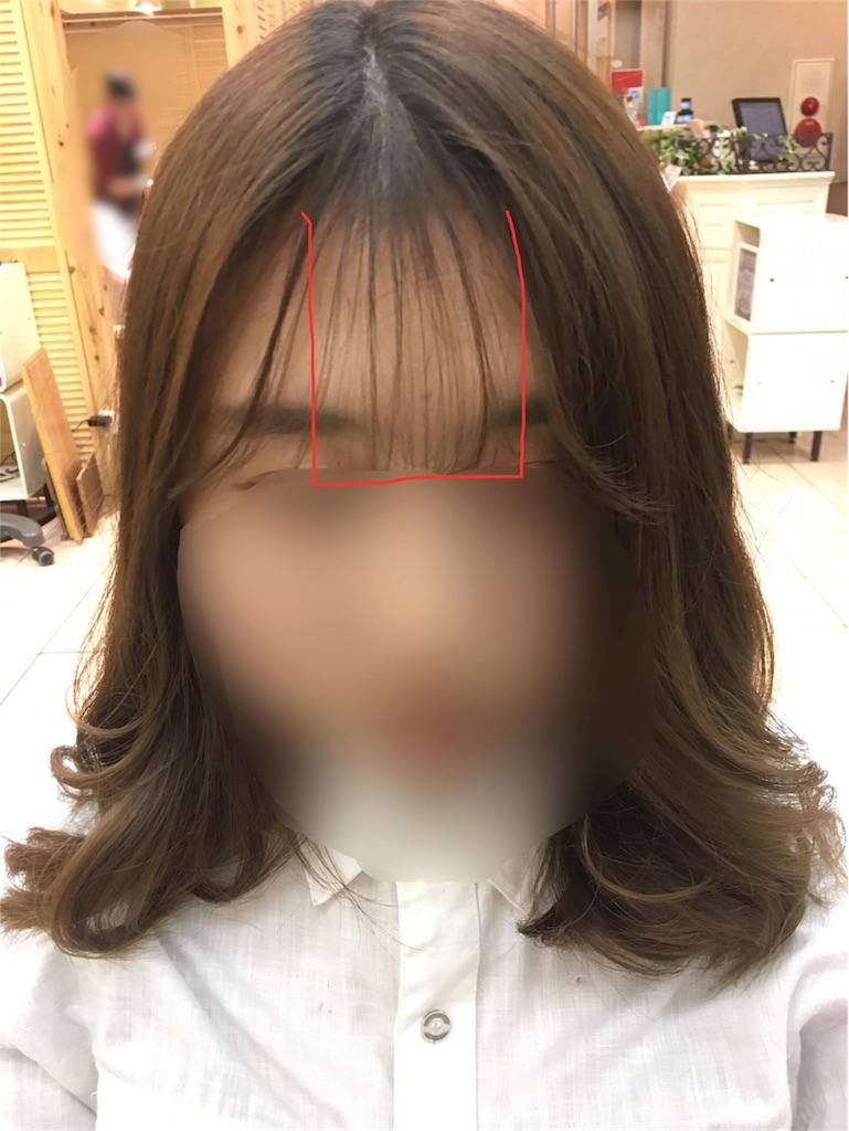 f:id:tomozou737:20170210111643j:image